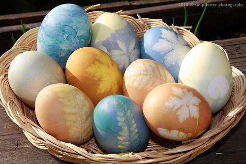Ostereier Naturfarben