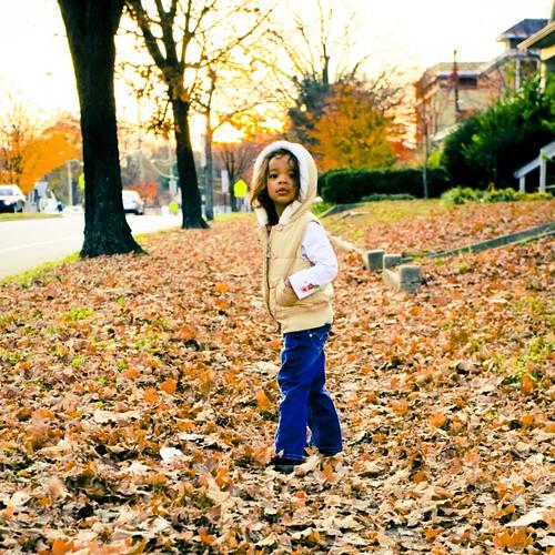 a fall walk-5533
