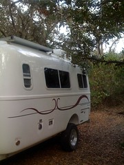 Orlando Forest Camping