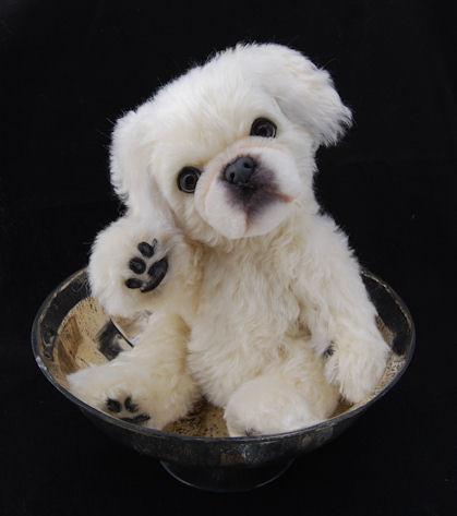 Lollihops stuffed Pekinese Dog Toy