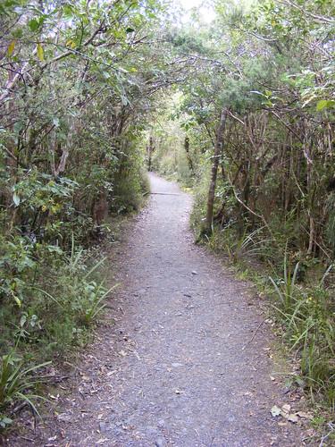 Tongariro Crossing Trail