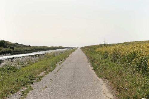 Path #2: Bring your wheelies