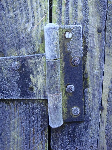 frosted hinge