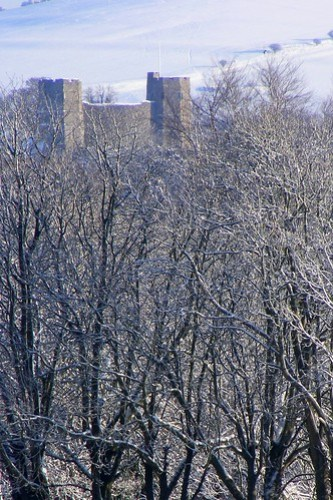 Lewes Castle Snow & Trees Jan 2010