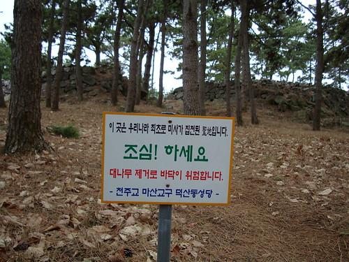 Ungcheon VIII