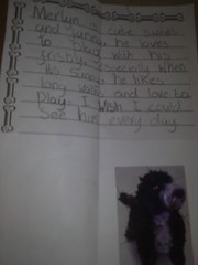 Poppy's 'Puppies' lapbook - Poppy's poem about Merlyn