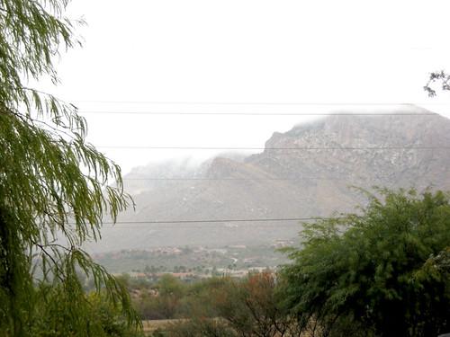 Arizona Showers