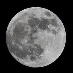 Wolf Moon on cold winter night