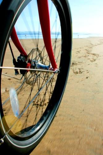 Balloon tire on the sand