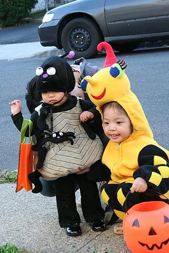 Spiders - Halloween 2008