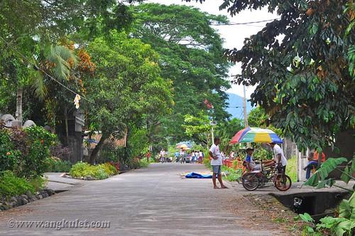 La Purisima, Pili, Camarines Sur
