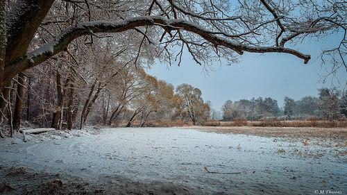 baum bieber felder fields land landscape landschaft samsunggalaxynote4 schnee smartphone sonstiges tree wetter offenbachammain hessen deutschland de
