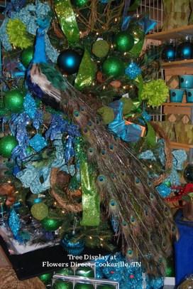 Holiday Peacocks  - Photo by Sharon McGukin AAF, AIFD, PFCI