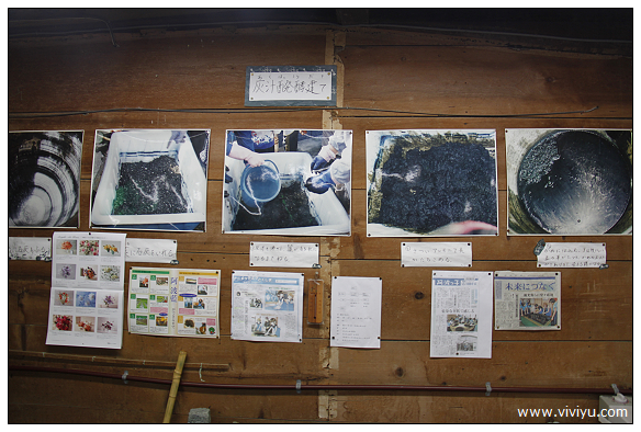 [2013日本四國]德島傳統工藝.藍染~藍之館.體驗藍染作品 @VIVIYU小世界