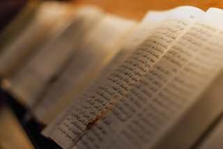 Bibles / Biblias  (Explore)