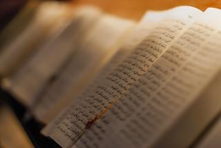 Bibles / Biblias  (Explore)