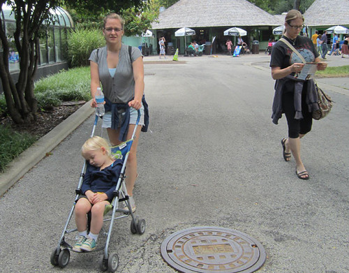 brookfield-zoo-2013-1.jpg