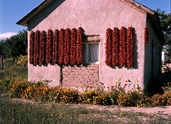Peppers drying near Taos, New Mexico