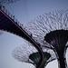 Singapore Trip 2014