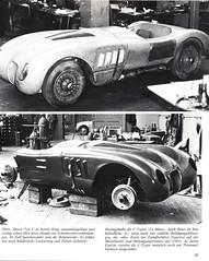 Jaguar - 089