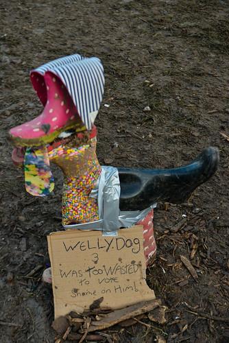 Wellie Dogs at Glastonbury 2016 (Friday) - Sara Bowrey