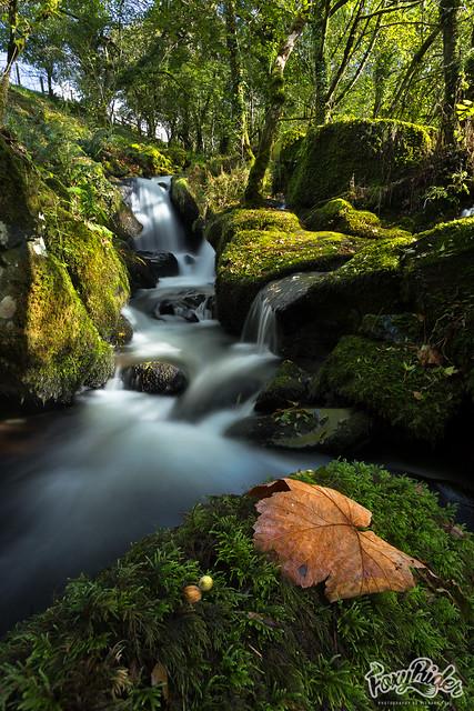 Colly Brook Upper Falls