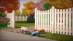 Les Sims 3 Animaux et cie