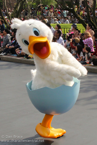 Ugly Duckling At Disney Character Central