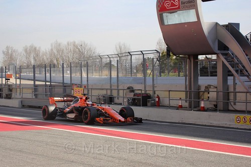 Stoffel Vandoorne in Formula One Winter Testing 2017