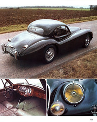 Jaguar - 135