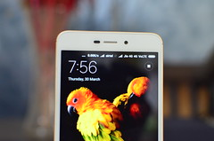 33069951693 ccf5b13ced m - Xiaomi Redmi 4A Review: The new Benchmark for Budget Smartphones