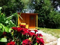 cariamas-fleurs-et-sanitaires-1024x768