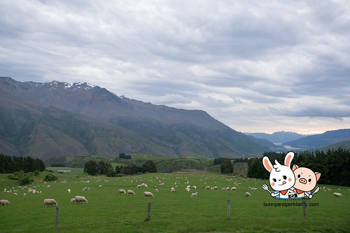 Cardrona to Queenstown