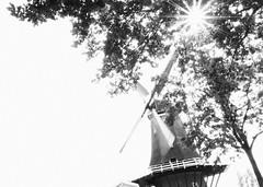 Daaiende molen - Turning Mill