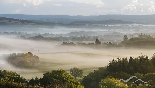 Brimley Mists