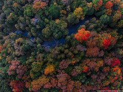 "Fall Colours from Above • <a style=""font-size:0.8em;"" href=""http://www.flickr.com/photos/65051383@N05/15397301375/"" target=""_blank"">View on Flickr</a>"
