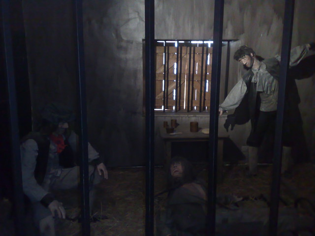 Inside the Cells