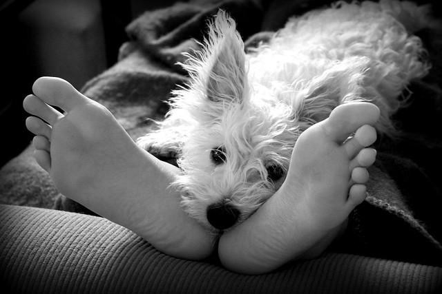 Musetta loves feet