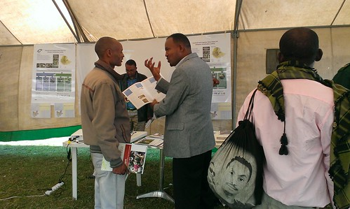 LIVES stand at Hawassa agribusiness finance fair, March 1 2014