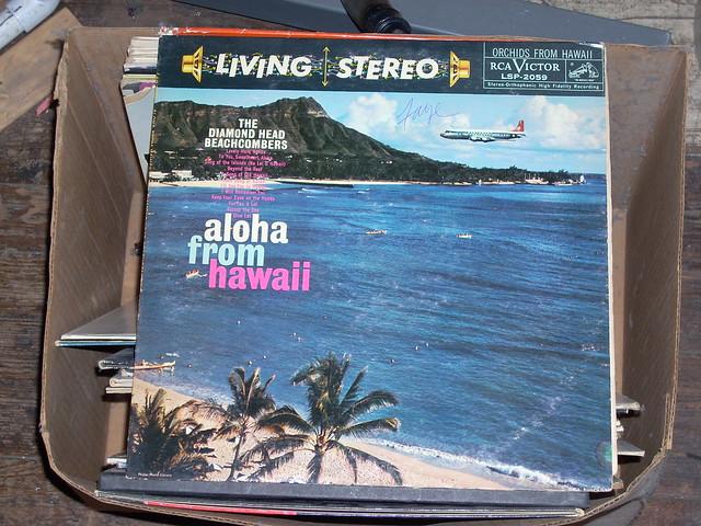 Aloha means good-bye