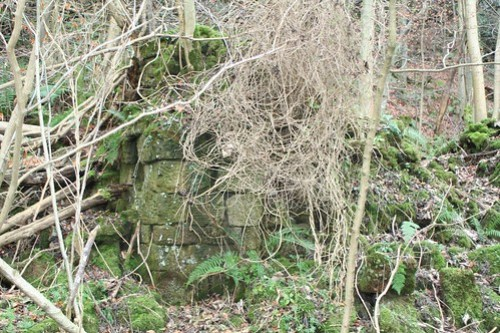Building remains near West Beck