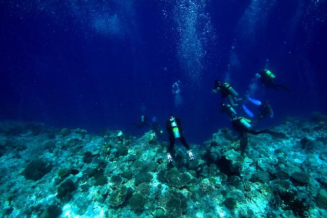 Tubbataha Reef Divers