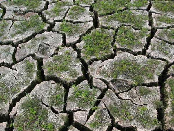 the dry season