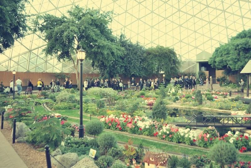 Show Dome