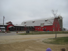 The Barn Area