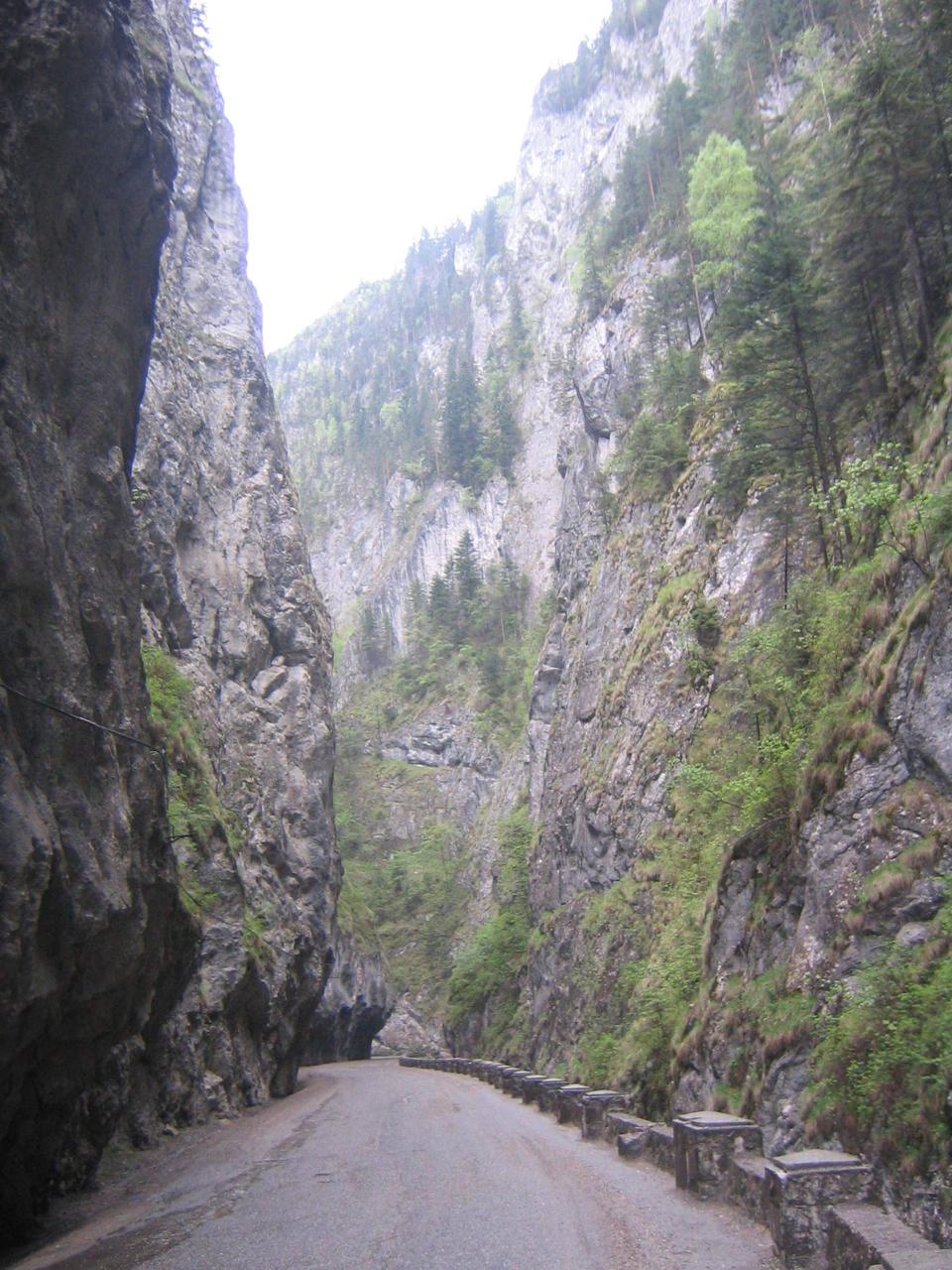 Transilvanian mountains