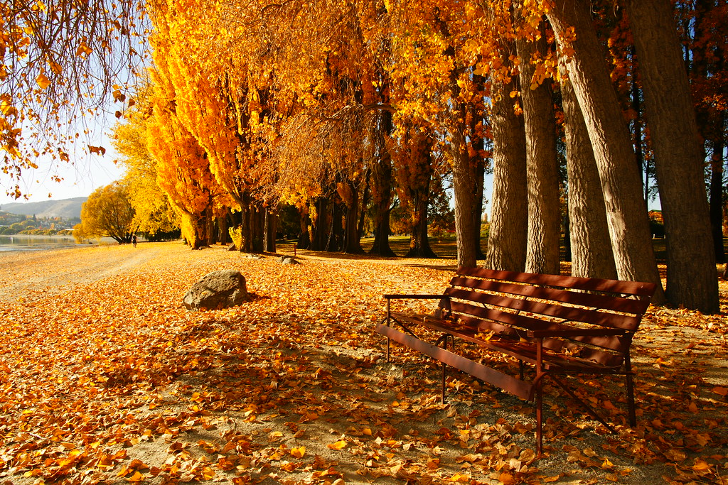 Wanaka in Autumn
