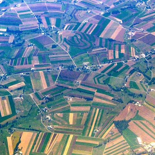 Farmland Allsorts