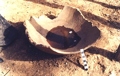 Broken potsherd used as a water bowl for chickens, Southeast Sénégal (West Africa)
