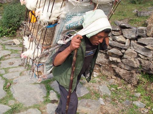 nepal 215
